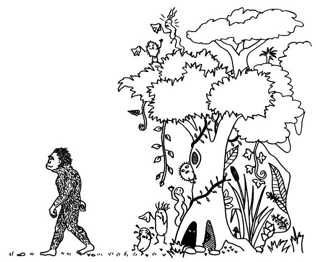menschwerdung durch habitatwechsel und pathogenverlust