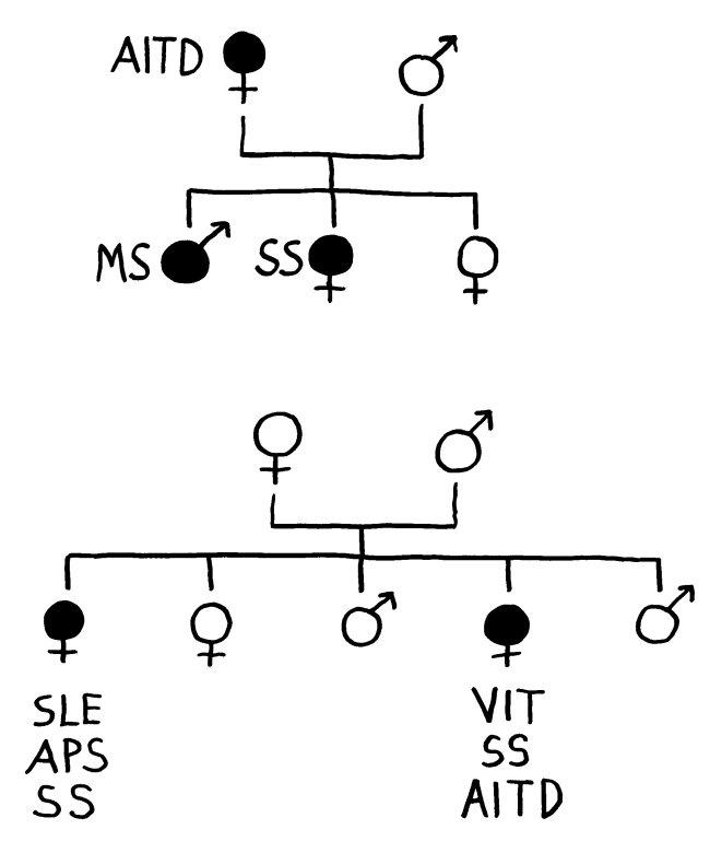 P1170847_AIE-Vererbung_650