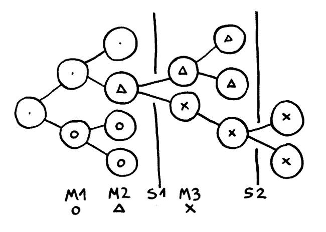 Welche Zellklone überleben und sich ausbreiten, hängt vom aktuellen lokalen Selektionsdruck (S) ab. So kann am Ende ein Klon das Rennen machen, der lange eher einen Selektionsnachteil hatte und sich daher kaum vermehrt hat (X).