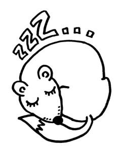 Lethargie, viel Schlaf, Schonhaltung, Wärmeverlustminimierung